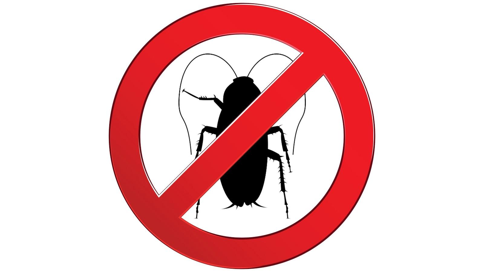 insekticidi